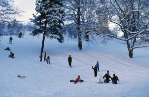 Barn i lek. Aking i park Vinter i byen. St. Hanshaugen. Oslo.